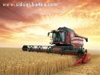 Изкупуваме земеделска земя в районите на Асеновград, Садово